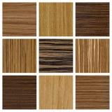Samling av wood texturer Arkivfoto