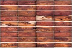 Samling av Wood texturuppsättning 03 Royaltyfri Foto