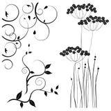 Samling för formgivare, äng, växtvektoruppsättning stock illustrationer