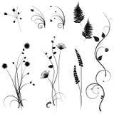 Samling för formgivare, äng, växtvektoruppsättning royaltyfri illustrationer