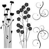 Samling för formgivare, äng, växtvektoruppsättning vektor illustrationer
