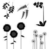 Samling för formgivare, växtvektoruppsättning royaltyfri illustrationer