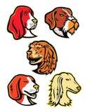 Samling för maskot för hundhundkapplöpning Arkivfoto