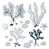 Samling för vattenväxter, sten-, sjöstjärna- och snäckskal vektor illustrationer