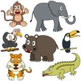 samling för 2 afrikansk djur Royaltyfri Fotografi