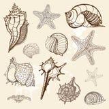 samling tecknat handillustrationhav Arkivbilder