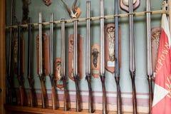 samlingen av det gamla jaktvapnet Royaltyfri Bild