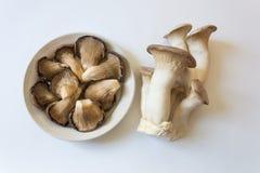 Samlingen av eryngii för champinjoner och för Pleurotus för Pleurotusostreatusostron gör till kung Trumpet Mushrooms Fotografering för Bildbyråer