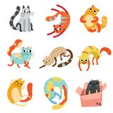Samlingen av gulliga roliga katter i olikt poserar vektorillustrationen stock illustrationer