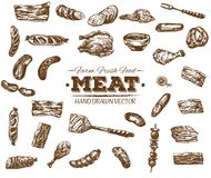 Samlingen av handen dragit kött skissar royaltyfri illustrationer