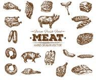 Samlingen av handen dragit kött skissar stock illustrationer