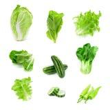 Samlingen av lottgrönsaker som isolerades på vit bakgrund, ställde in nolla Arkivfoto