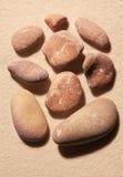 Samlingen av nio rosa färger tonade havsstenar på sand Arkivbilder