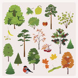 Den stora samlingen av realistiska skogtrees, att gräma sig, lämnar Arkivfoto