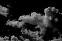 Samlingen av vit fördunklar på svart bakgrund Arkivbild