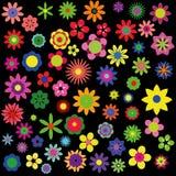 samlingen blommar sommar Royaltyfri Fotografi