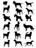 samlingen dogs silhouettesvektorn Arkivbild