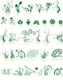 samlingen planlägger blom- Royaltyfria Foton