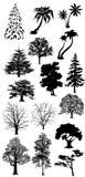 samlingen silhouettes treen Royaltyfria Bilder