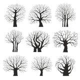 samlingen silhouettes trees Royaltyfri Bild
