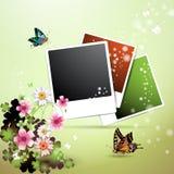 samlingsfoto Royaltyfria Bilder