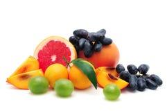 Samlingsfrukt Royaltyfria Bilder