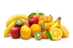 Samlingsfrukt Royaltyfri Bild