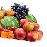 Samlingsfrukt och grönsaker Fotografering för Bildbyråer