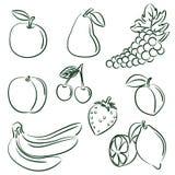 samlingsfrukter royaltyfri illustrationer