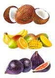 samlingsfrukter isolerade white Arkivbild