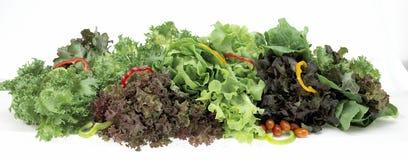 Samlingsgrönsaker som isoleras på en vit bakgrund Royaltyfri Foto