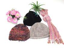 Samlingshattar för vinter Arkivfoto