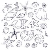 samlingshavet shells din avståndstext Arkivfoton