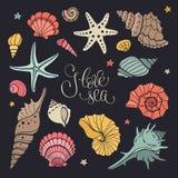 samlingshavet shells din avståndstext Arkivbilder