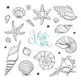 samlingshavet shells din avståndstext Arkivbild