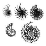 samlingsspiral stock illustrationer