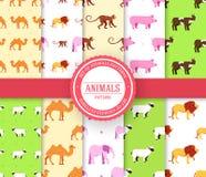 Samlingsuppsättning av den djura sömlösa modellen Lejon apa, apa, kamel, elefant, ko, svin, får med etikettlogo Arkivfoto