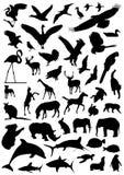 samlingsvektor för 2 djur vektor illustrationer