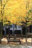 A samll sqaure near the University of Antwerp Stock Photos