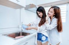 Samma könsbestämmer den asiatiska lesbiska parkvinnaasiatet som gör hushållsarbete fotografering för bildbyråer