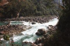 Sammanflöde av två floder Arkivbilder