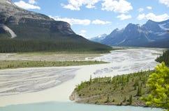 Sammanflödet av glaciärfloden och den Howse floden Royaltyfria Bilder