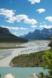 Sammanflödet av glaciärfloden och den Howse floden Royaltyfria Foton