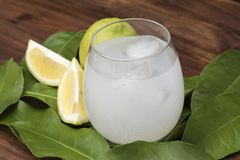 Sammanpressad citronjuicedrink royaltyfria bilder