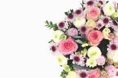 Sammansättning av blommor royaltyfri fotografi