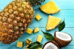 Sammansättning av den nya ananas och kokosnöten Royaltyfri Foto