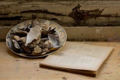 Sammansättning av en platta fyllde med musslor och en bok Fotografering för Bildbyråer