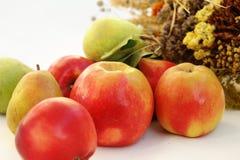Sammansättning av höstäpplen och päron på en vit bakgrund arkivfoto