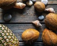 Sammansättning av nya ananas och kokosnötter på träbakgrund Royaltyfri Fotografi