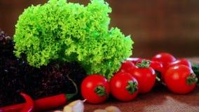 Sammansättning av nya grönsaker och kryddor arkivfilmer